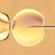 Eugénisme, GPA, «maternité partagée», embryons chimères… Ces dilemmes bioéthiques susceptibles d'enflammer le débat