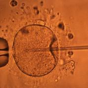 «Les défenseurs du projet de loi bioéthique ont trahi l'héritage des Lumières»