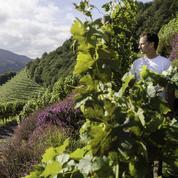 De Biarritz à Saint-Jean-de-Luz: dix idées originales pour (re)découvrir le Pays basque
