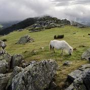 Du col d'Ispéguy au mont Autza, le bonheur est dans la randonnée