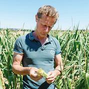 En Charente, les agriculteurs souhaitent pouvoir stocker l'eau