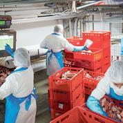 Travailleurs détachés: l'Allemagne elle aussi décidée à «faire le ménage» dans les contrats