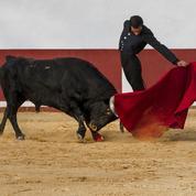 Cette Espagne qui crie: «Vive l'arène!»
