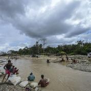 L'Amazonie vénézuélienne dévastée par «l'or du sang»