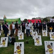 Néonicotinoïdes: les opposants aux pesticides «tueurs d'abeilles» se mobilisent