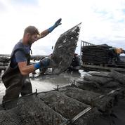 La Manche se démène pour séduire de nouveaux travailleurs