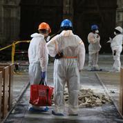 Cathédrale de Nantes: les travaux démarreront en 2021