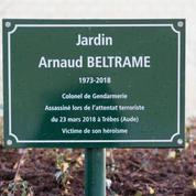 Olivier Babeau: «Le colonel Beltrame a succombé sous les coups de l'islamisme radical»