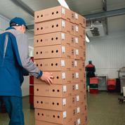 La baisse des impôts de production profitera majoritairement aux PME et aux ETI