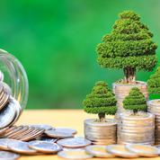 Les obligations vertes promises à un bel avenir