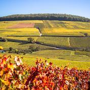 Escapade à Beaune dans les Climats de Bourgogne
