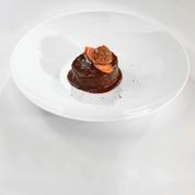 Boeuf carottes, pressé de pommes de terre, tarte aux poires: le menu signé Thierry Marx pour Thomas Pesquet