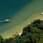 Carnet de voyage à Mata Atlantica, une jungle océanique aux portes de São Paulo