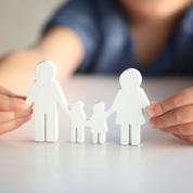 Vent de critiques contre la loi sur l'adoption