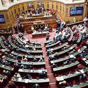 Article 24: bras de fer institutionnel entre la majorité présidentielle et les sénateurs