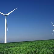 «Ne sous-estimons pas les dégâts écologiques qu'engendreront l'installation de 15.000 nouvelles éoliennes»