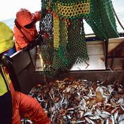 Accord post-Brexit: les pêcheurs français soulagés mais vigilants