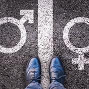 Théories du genre, non-binarité: «Prémices d'une civilisation déshumanisée»