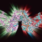 L'ARN messager, utilisé dans les vaccins anti-Covid, une piste pour traiter la sclérose en plaques