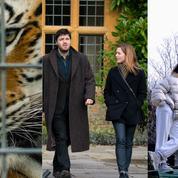 Le commerce du tigre, la mode en temps de pandémie, C.B. Strike ,... Nos tops et nos flops télé de la semaine