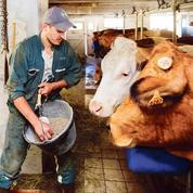Les cours des produits agricoles flambent