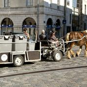 Au Mans, la collecte des déchets à cheval ravive le débat antispéciste