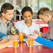 Étudiants: 60 députés favorables à un ticket restaurant dédié