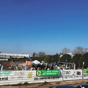 Dans le triangle de Gonesse, une ZAD pour s'opposer à l'urbanisation des terres