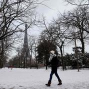 La grippe, grande absente de l'hiver