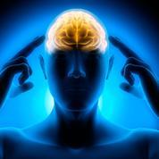 Métamorphopsies: et si une épilepsie était responsable de ces hallucinations visuelles?