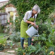Comment les femmes arrondissent leur petite pension