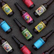 Heineken investit pour faire mousser la bière artisanale Gallia