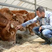 Le combat des filières agricoles pour se partager la manne de la PAC