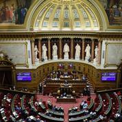Loi climat: les citoyens se tournent vers le Sénat