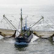 La pêche électrique définitivement interdite en Europe