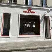 Royal Canin goûte à la vente directe au cœur de Paris