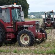 Les Safer, vigies pointilleuses et redoutées des terres agricoles