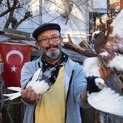 Sur les toits d'Istanbul, les pigeons de la liberté