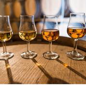 La filière cognac reste confiante malgré 15% de dégâts dus au gel