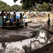 Au Mozambique, le djihadisme prospère sur le trafic de drogue