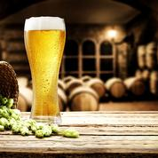 Aurez-vous un 10/10 à ce test sur les mots de la bière?
