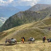 Tourisme: le retour en grâce du nomadisme