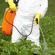 Malgré les controverses, le glyphosate pourrait être autorisé en Europe après 2022