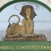 Conseil constitutionnel: la loi de bioéthique devant les Sages