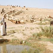 Irak: les larmes du Tigre