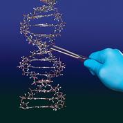 Une maladie rare soignée par les ciseaux génétiques