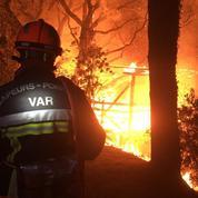 Dans le Var, la réserve naturelle des Maures dévastée par un feu de forêt