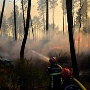 Arbres calcinés, terre noire et fumante: les Varois constatent les dégâts