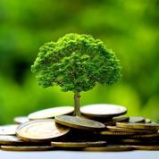 La finance durable souffre d'un manque de repères