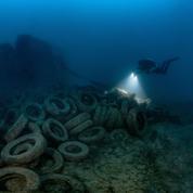 Le bassin méditerranéen, un joyau de biodiversité à protéger d'urgence